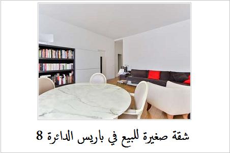 شقة صغيرة للبيع في باريس 1