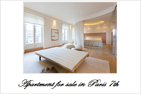 Apartment for sale in paris 7th