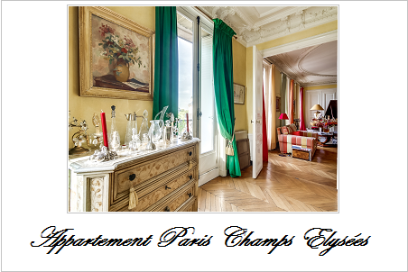 Appartement a vendre paris champs elysees