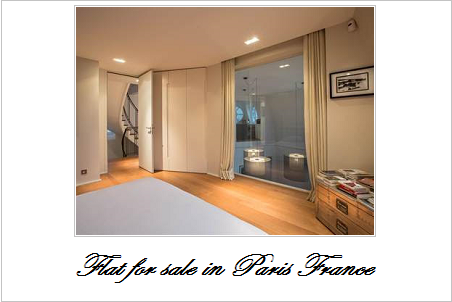 Flat for sale in paris france