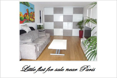 Little flat for sale near paris
