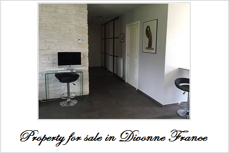 Property for sale in divonne france
