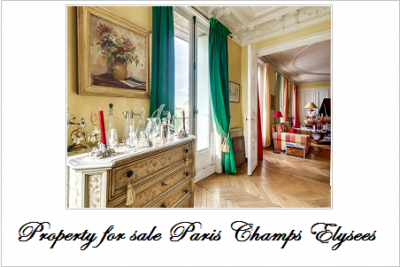 Property for sale in paris champs elysees