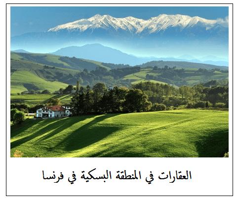 عقارات المنطقة البسكية